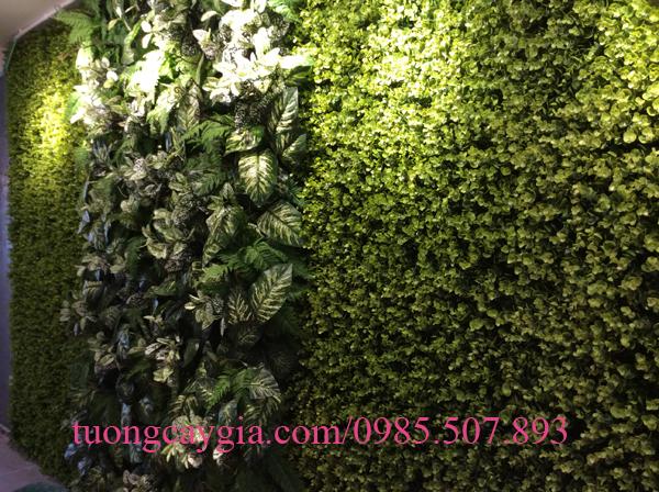 Trang trí tường cỏ nhựa tại Hà Nội