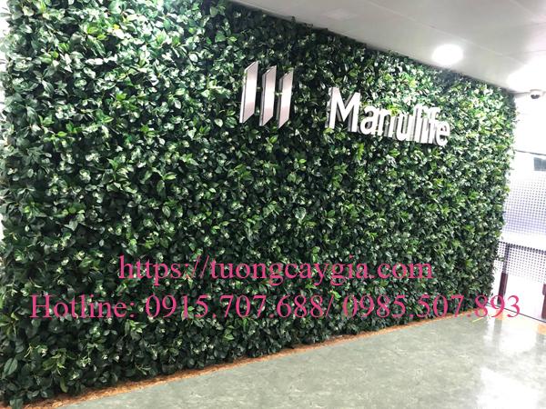 Lắp đặt toàn bộ hệ thống tường cây giả tại tòa nhà Manulife