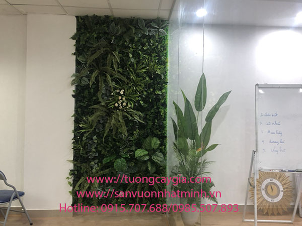 Trang trí và lắp đặt vách tường cây văn phòng tại Hà Nội