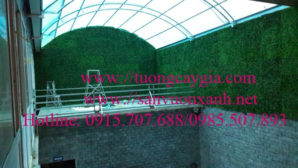 Tường cỏ giả giá rẻ tại Hà Nội