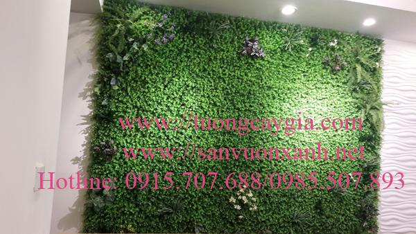 Thi công tường cỏ tại Time city Hà Nội