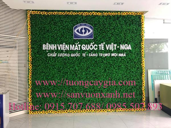 Trang trí lắp đặt tường cỏ giả tại Bệnh viện mắt quốc tế Việt - Nga