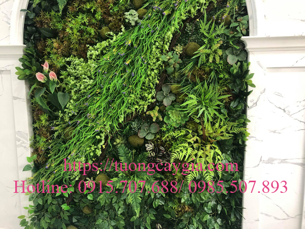 Thi công tường rêu gắn sen đá tại Cenco 5 - Mường Thanh - Thanh Hà