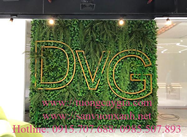 Trang trí không gian xanh tại tập đoàn DVG tầng 29 tòa nhà Keangnam