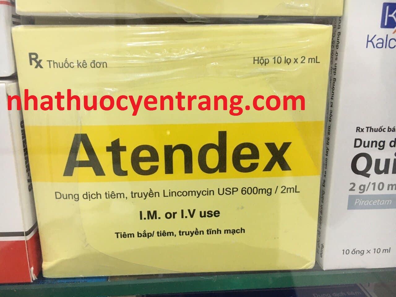 Atendex