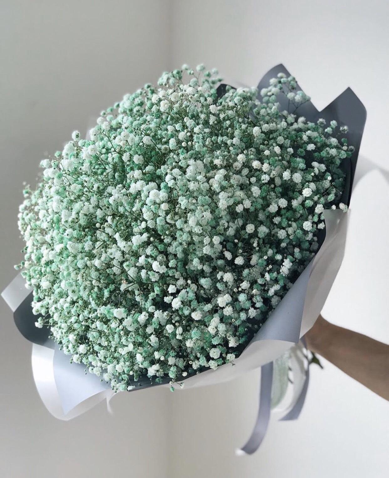 Bó hoa baby nhiều mầu | Eliseflowers - Shop hoa tươi online