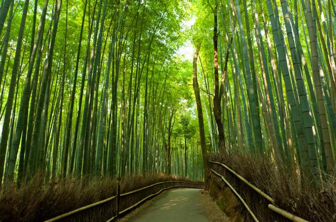 arashiyama-and-sagano-morning-walking-tour-in-kyoto-153141