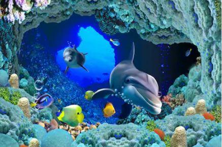 Hoạt hình cá - THH63