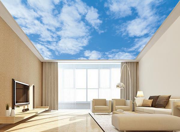 Trần mây - MS30