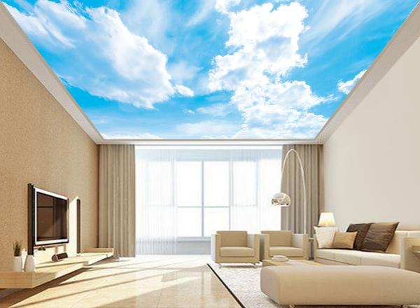 Trần mây - MS31