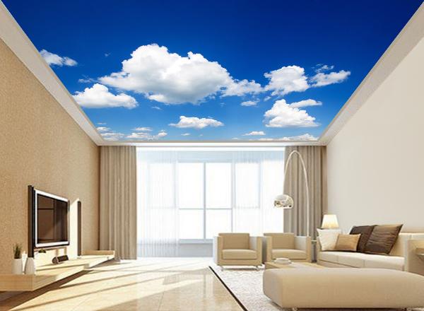 Trần mây - MS36