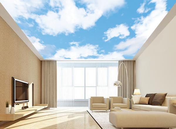 Trần mây - MS26