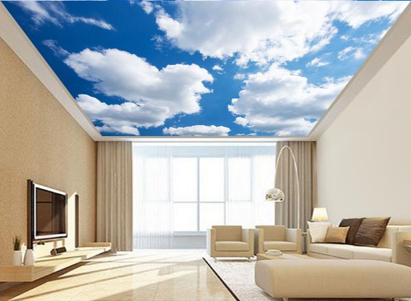 Trần mây - MS41