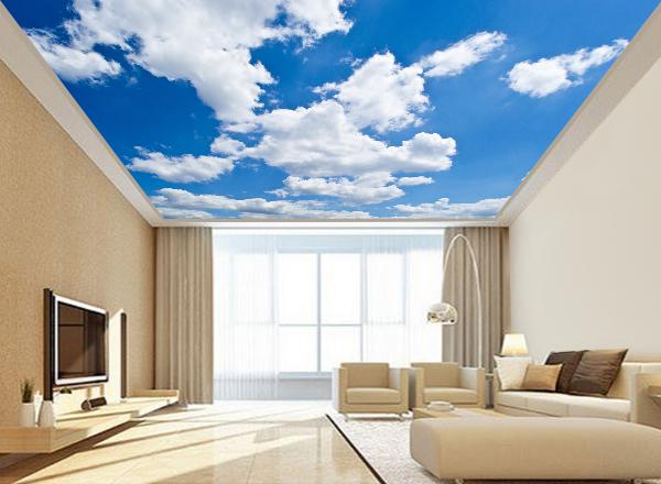 Trần mây - MS45