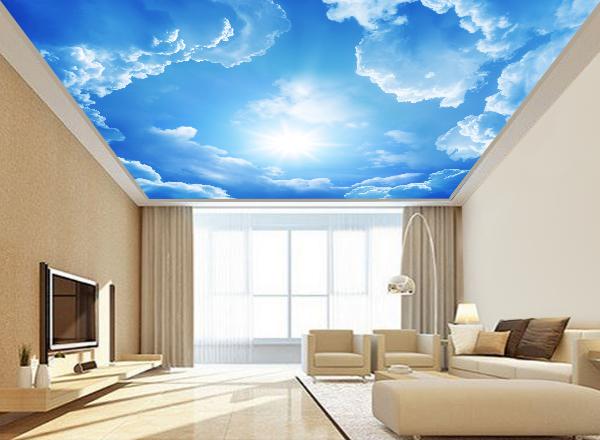 Trần mây - MS49