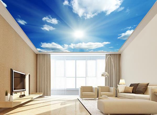 Trần mây - MS51
