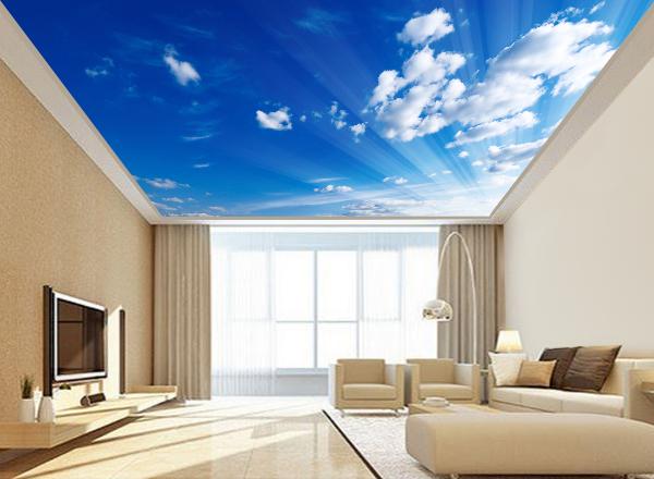 Trần mây - MS55