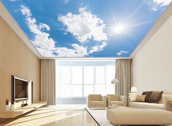 Trần mây - MS57