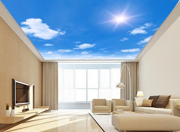 Trần mây - MS58