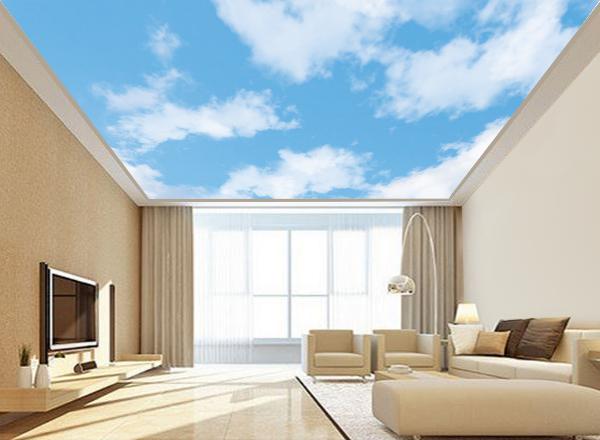 Trần mây - MS28