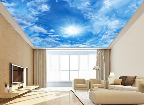 Trần mây - MS61