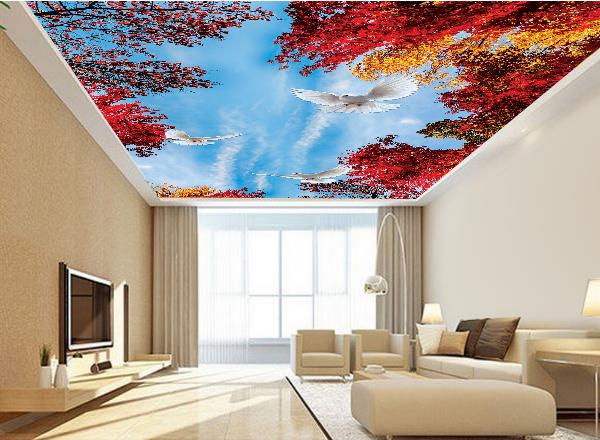 Tranh 3d trần nhà - MS128