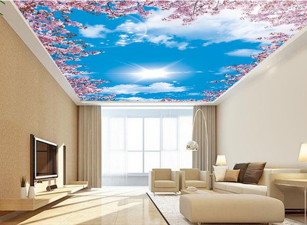Tranh 3d trần nhà - MS129