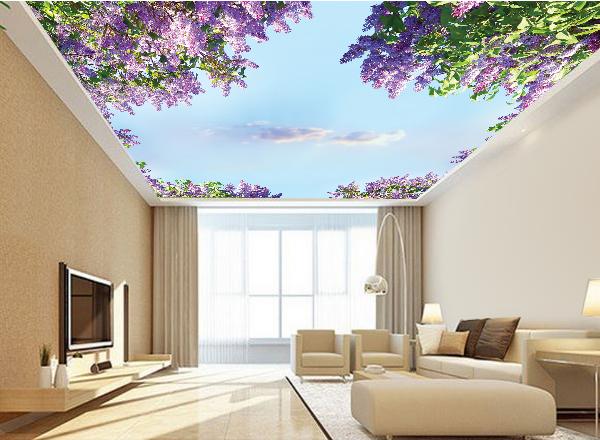 Tranh 3d trần nhà - MS132