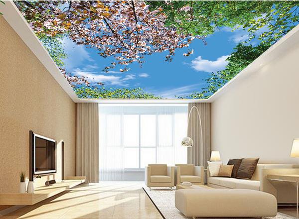 Tranh 3d trần nhà - MS123