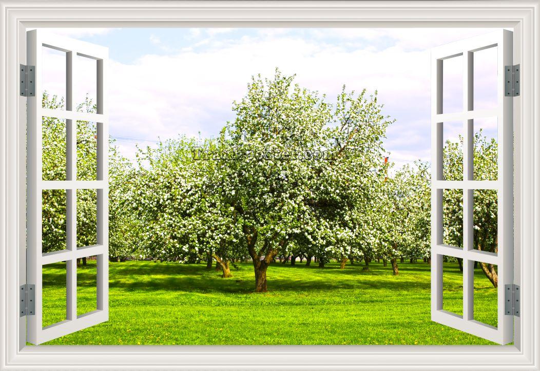 Tranh cửa sổ 3D - CS10