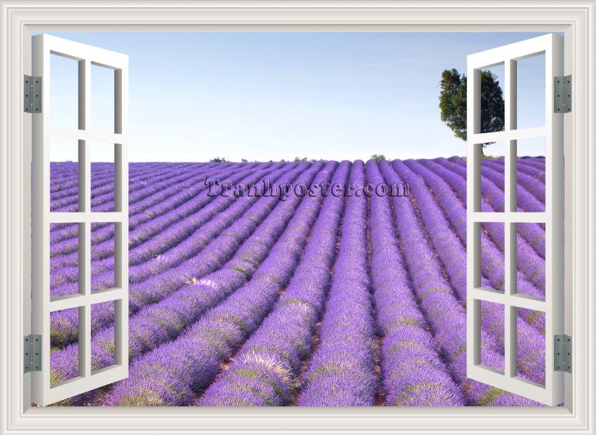 Tranh cửa sổ 3D - CS31