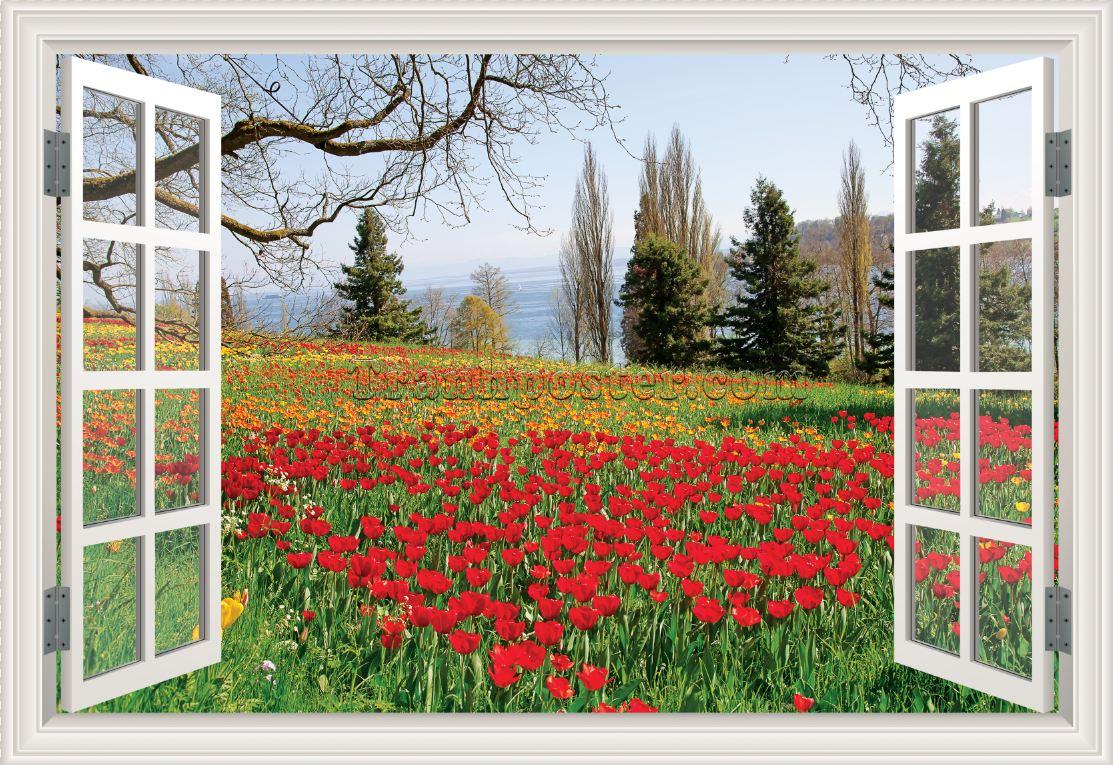 Tranh cửa sổ 3D - CS50