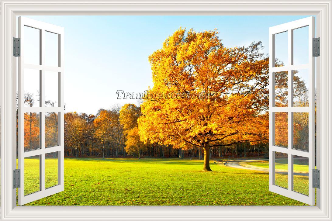 Tranh cửa sổ 3D - CS63