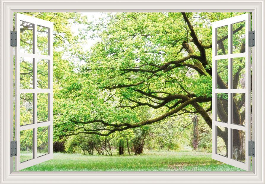 Tranh cửa sổ 3D - CS76