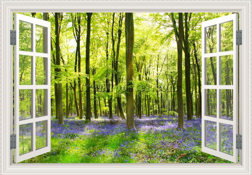 Tranh cửa sổ 3D - CS79