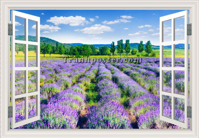 Tranh cửa sổ 3D - CS90