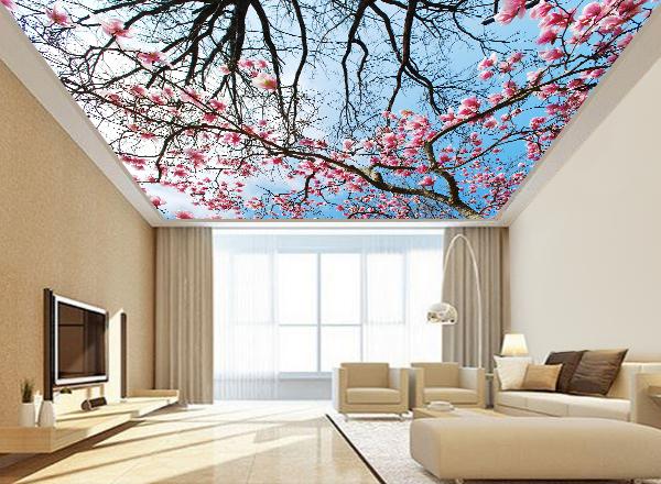 Tranh dán trần nhà 3d - MS142