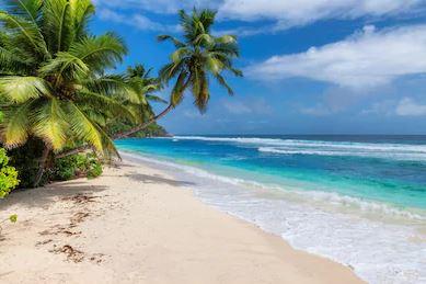 Tranh phong cảnh biển 11