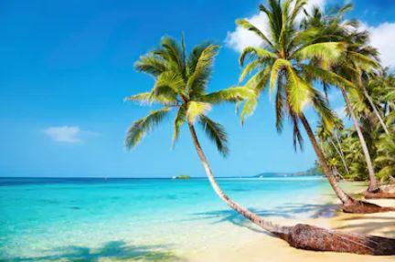 Tranh phong cảnh biển 12