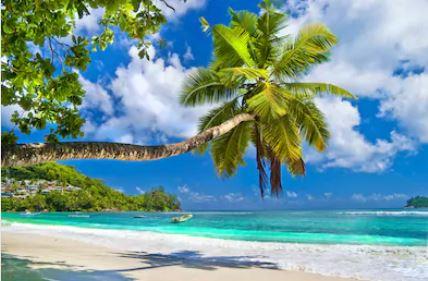 Tranh phong cảnh biển 13