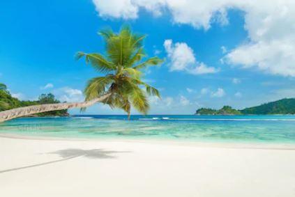 Tranh phong cảnh biển 14