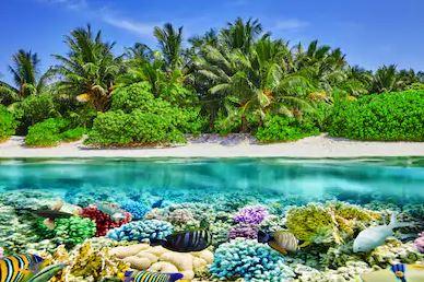 Tranh phong cảnh biển 17