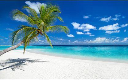 Tranh phong cảnh biển 18