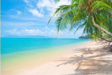 Tranh phong cảnh biển 19