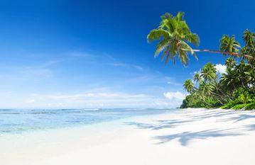 Tranh phong cảnh biển 29