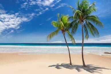Tranh phong cảnh biển 03