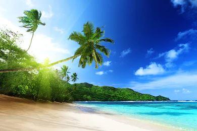 Tranh phong cảnh biển 04