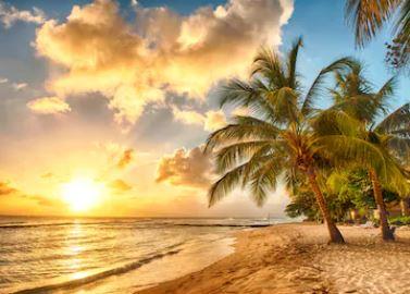 Tranh phong cảnh biển 41