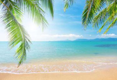 Tranh phong cảnh biển 05