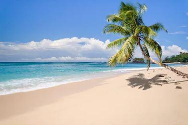 Tranh phong cảnh biển 70